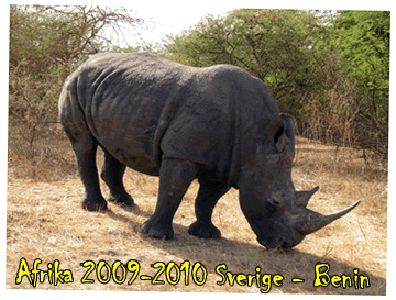 Afrika Expedition 08-09